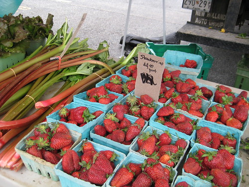 strawberries and rhubarb | by rhea_kennedy