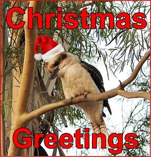 eCard- Christmas Greetings - kookaburra | by you get the picture