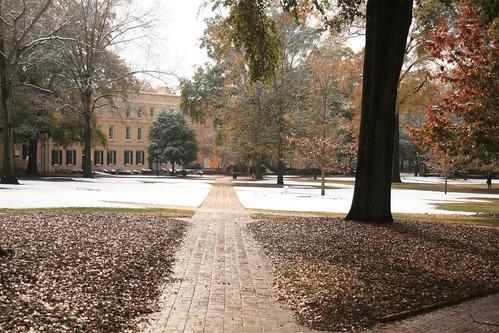 Horseshoe, University of South Carolina | by jay8085