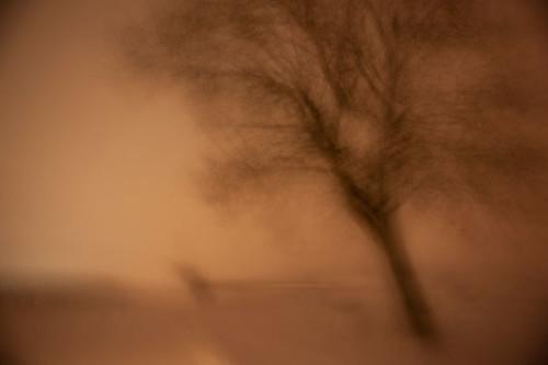 Snow Flow at Midnight