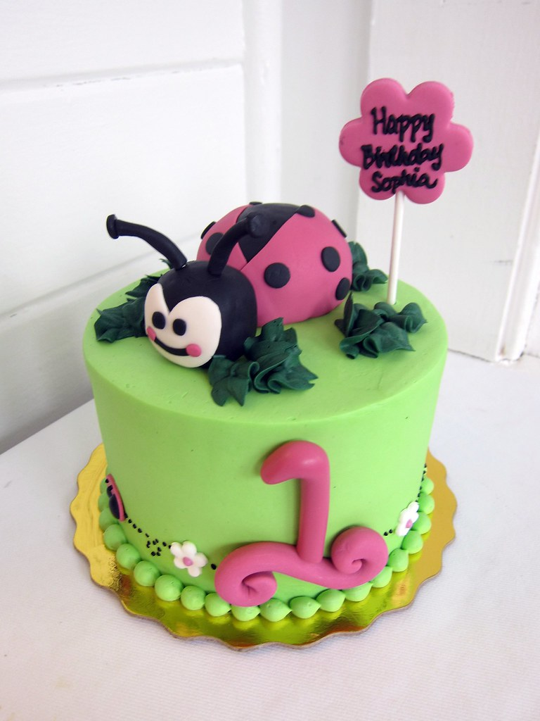 Amazing Lady Bug Birthday Cake Polkadots Olga Flickr Funny Birthday Cards Online Alyptdamsfinfo