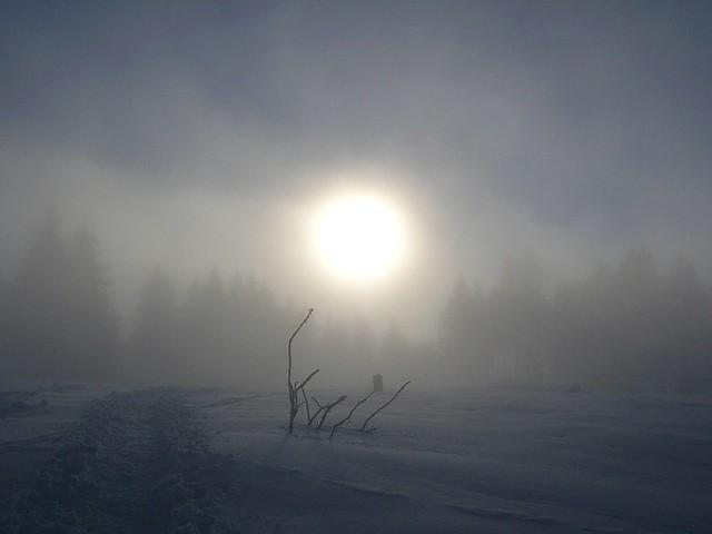 Foggy snow landscape