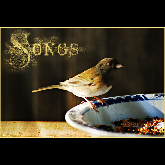 sing for your supper III . . .