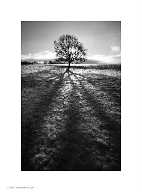 Winter Sun, Poynton, Cheshire