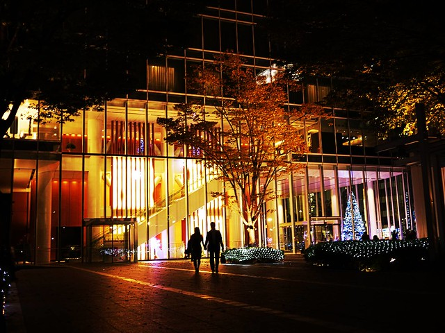 Tokyo nightscape (1)