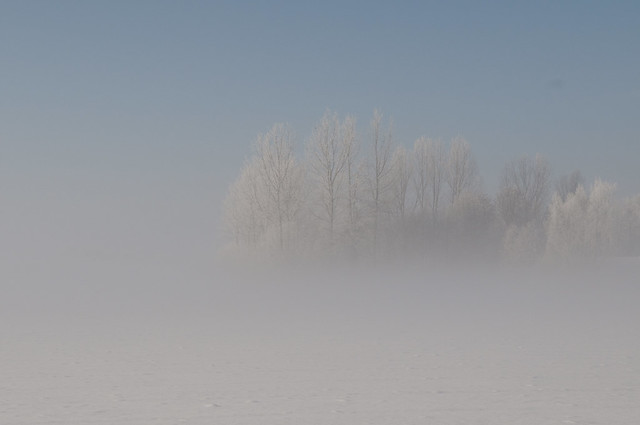 Lith, Mist over sneeuw Fog over snow