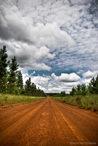 road clouds dirt hdr pineforest