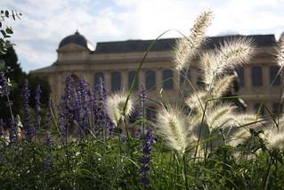 Jardin des plantes, Paris   by www.Paris-Sharing.com