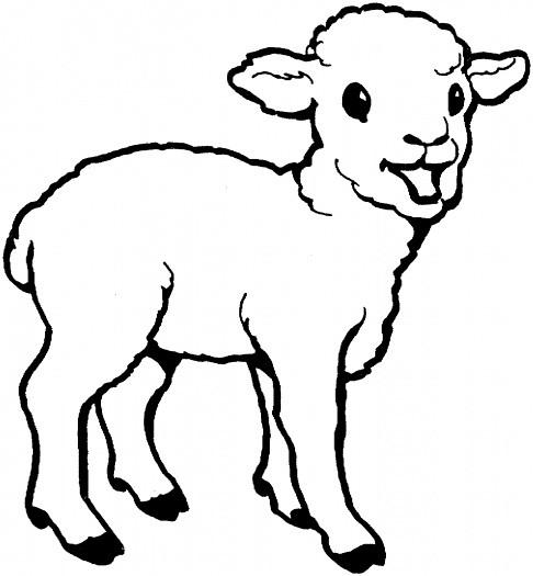 cute-sheep-coloring-page | arthurfei.tw | Flickr