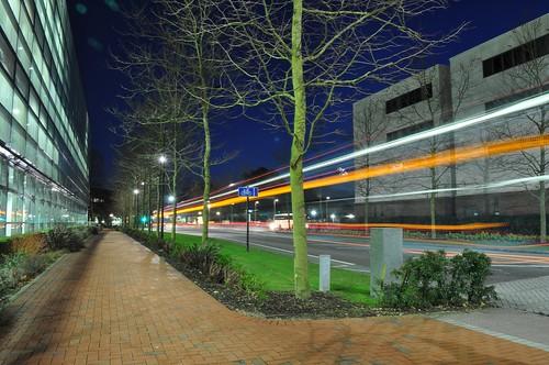 University Road at Night