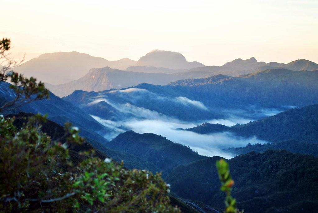 Mount Tahan (2,187m)