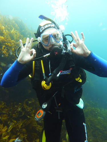 diving in Poor Knight Islands | by taquiman