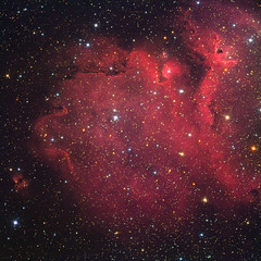 ic1848 By Peter Shah
