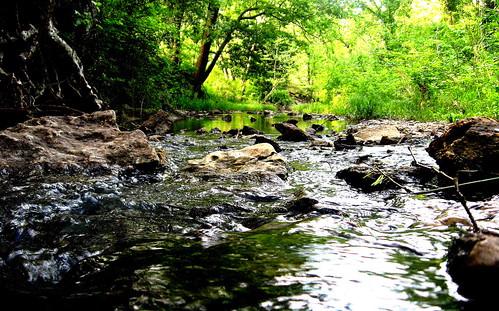 park trees oklahoma nature water creek river rocks running calm durant