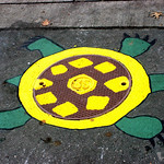 TurtleFinal