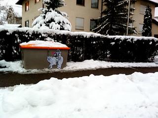 Baer und Er auf Schnee
