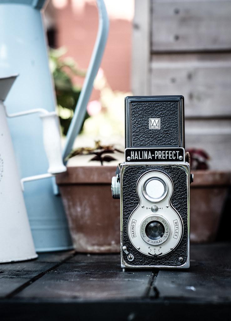 Vintage Camera Shy