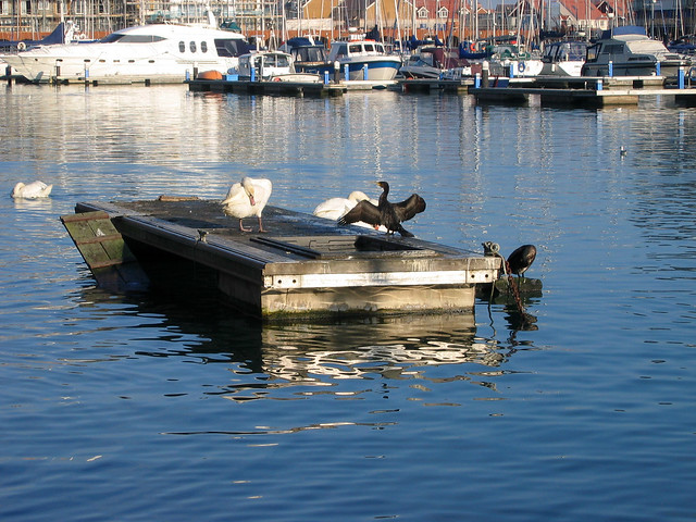 Soverign Harbour, Eastbourne