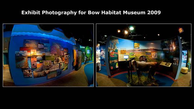 Bow Habitat Museum Photography