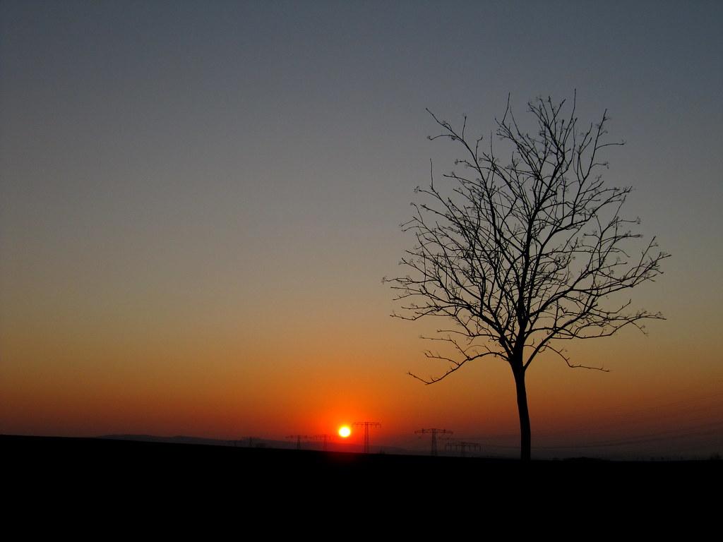 Wünsche dir einen schönen abend
