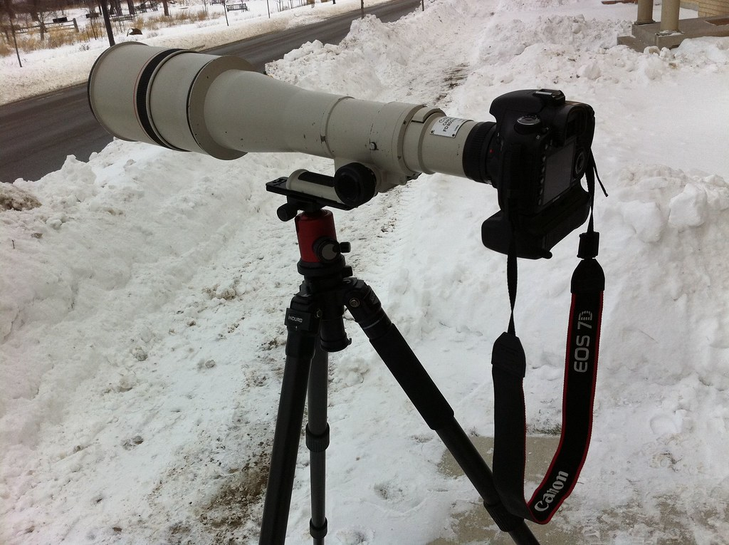 Canon FD 800mm 5 6L with 7D and Ed Mika Opticless FD to EO