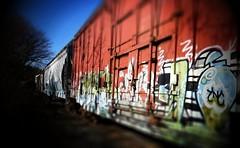 Freight Cars, Tate, Georgia