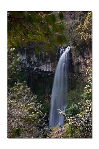 cascada velo de novia Chilchotla-5885