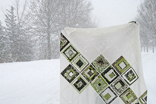 denyse schmidt greenfield hill quilt top | by filminthefridge