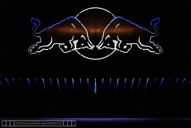 RedBull-RollerRagers-20thNov2010-BECC-1