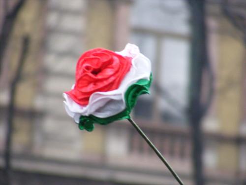 Milano 13 febbraio 2011