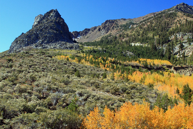 Scenes from CA 120 climbing to Tioga Pass