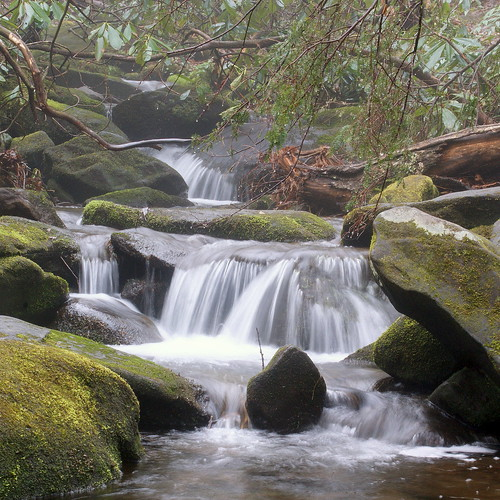 nature water forest countryside tennessee ngc gatlinburg smokymountains sony350