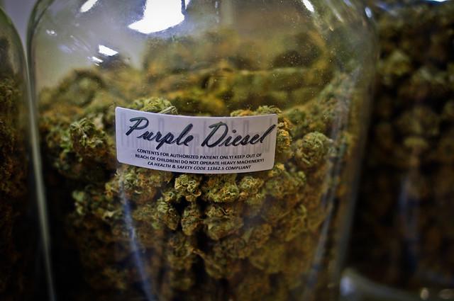 Purple Diesel, Big Jar
