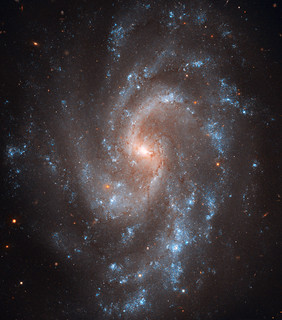Spiral Galaxy NGC 5584 | by Hubble Heritage