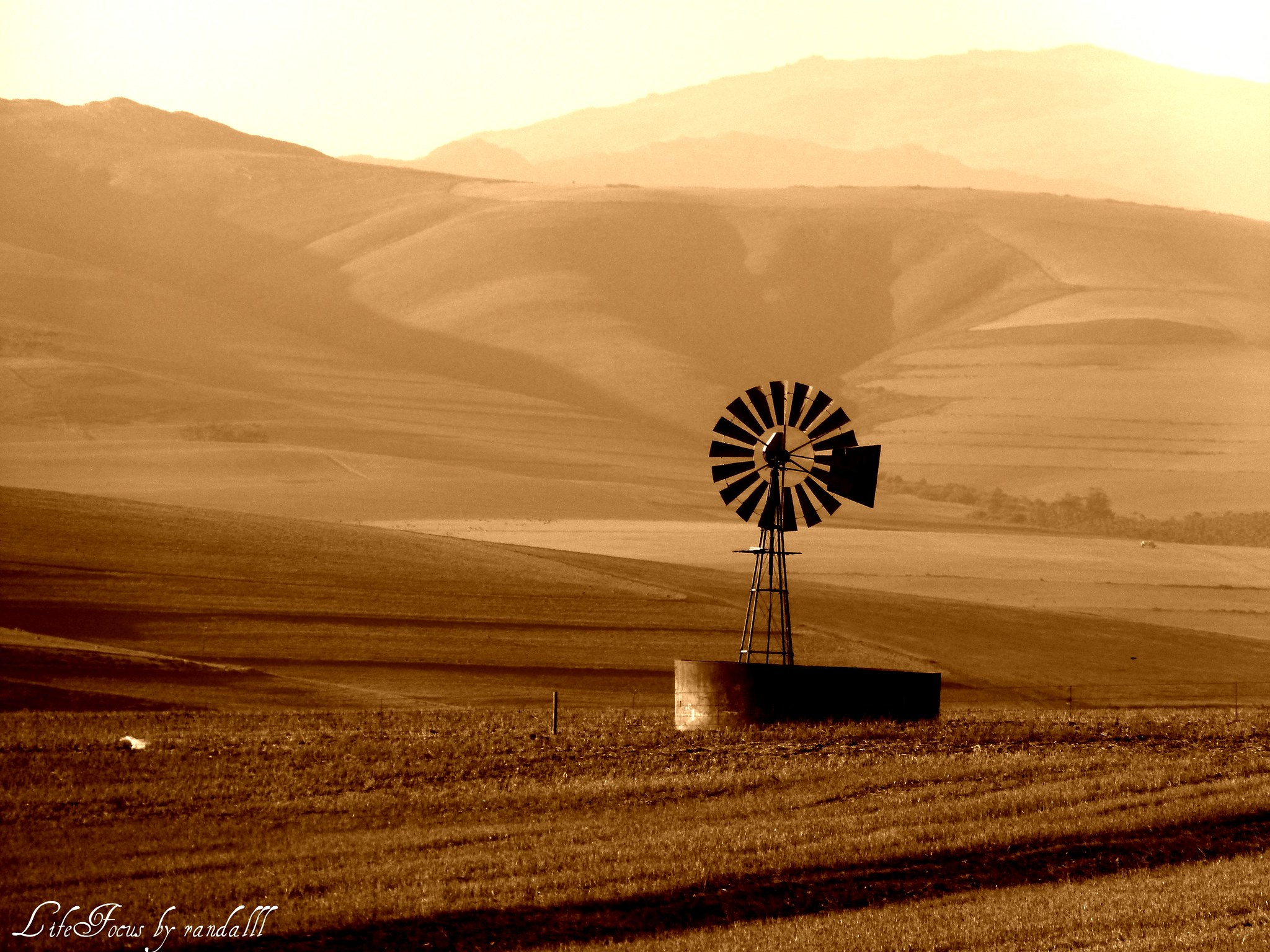 the solitary windmill