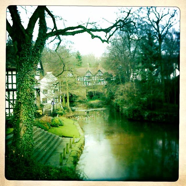 Worsley canals + ducks.