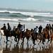 Randonnée Equestre en Béarn Pays basque