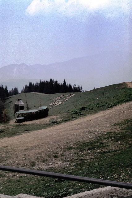 In the Carpathian Mountains, Romania 1976