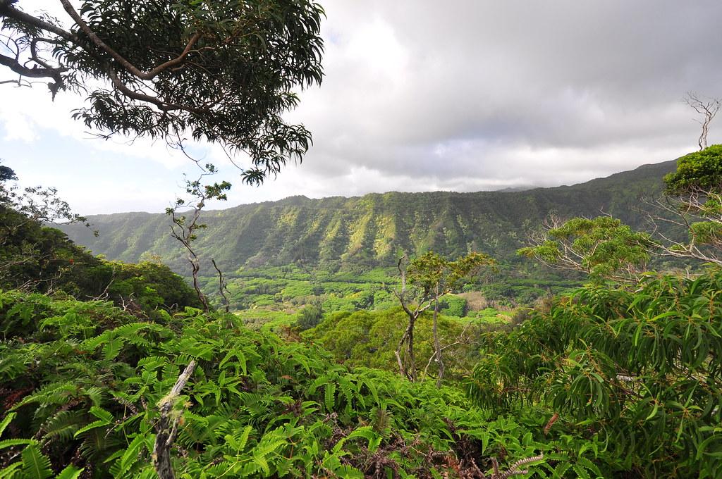 Kalihi Valley | Kamanaiki Ridge Trail | XJ | Flickr