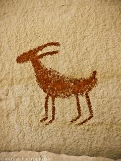 Red Sheep | by IntrepidXJ