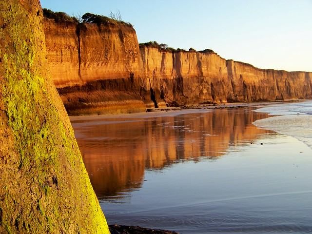 Point Addis Marine National Park,  Anglesea cliffs at low tide pic 1