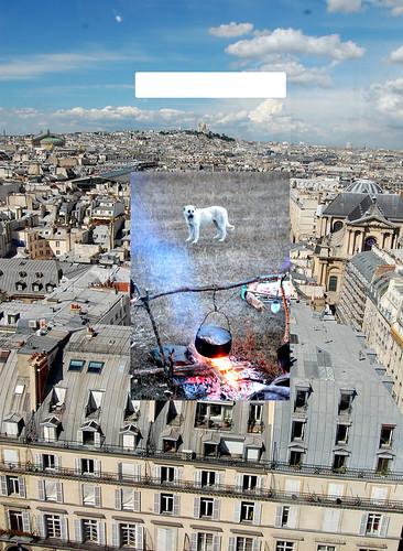 city dog paris landscape fire town kettle