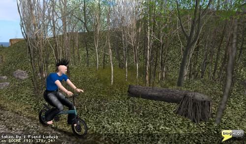 Bike copse! | by fiend_ludwig