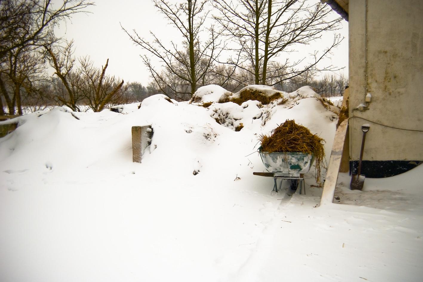 winter challange