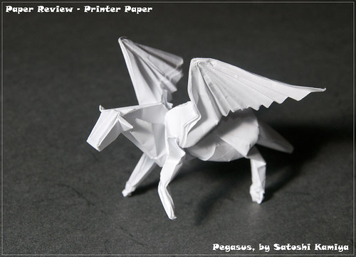 Printer/Copy Paper Review - Pegasus | by garibi ilan