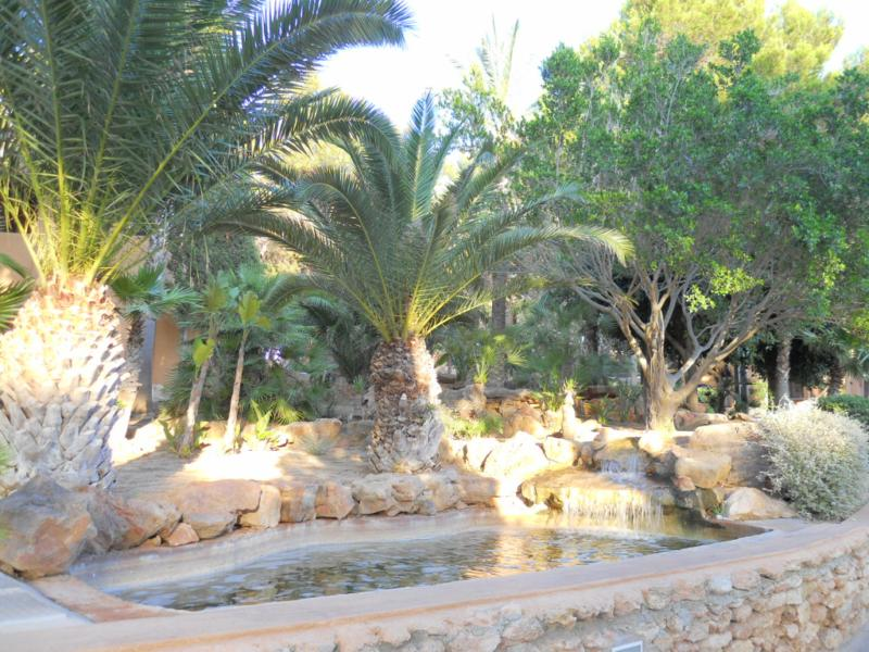 Tipos de estanques para un jardín acuático