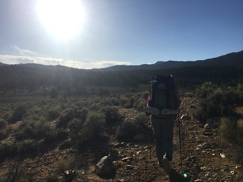 PCT: Day 54