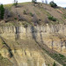 Narrows Basalt (Lower Pleistocene, 1.5 to 1.6 Ma; northeastern Yellowstone National Park, Wyoming, USA)
