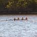 2014 Fall, Textile River Regatta, Womens 1V 4+