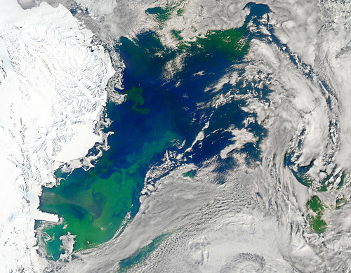 Bloom in the Ross Sea [detail] | by NASA Goddard Photo and Video